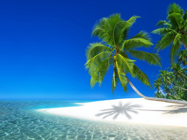 Insel Praslin